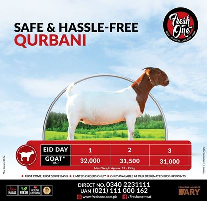 Picture of Safe and Hassle Free Qurbani Goat